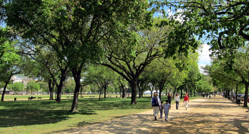 National_Mall_-_walking_path